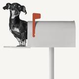 You've Got Mail Poster by Jon Bertelli
