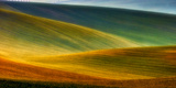 Spring Fields Photographic Print by Piotr Krol (Bax)