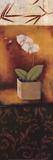 Orchid Song Poster von Rita Vindedzis