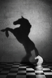 The Soul of a Mustang Fotografie-Druck von Victoria Ivanova