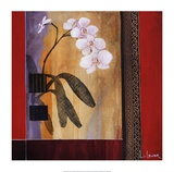 Orchid Lines I Plakat af Don Li-Leger