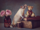 Snoozy and Friend Fotografisk tryk af Ellen Van Deelen