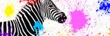Safari Colors Pop Collection - Zebra VII Giclée-tryk af Philippe Hugonnard