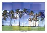 Kauai Poster von Pep Ventosa