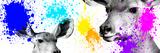 Safari Colors Pop Collection - Antelopes II Impressão giclée por Philippe Hugonnard