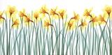 Floral Delight I Posters av Jim Wehtje