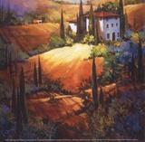 Lumière matinale, Toscane Posters par Nancy O'toole