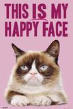 Grumpy Cat- Happy Face Kunstdrucke