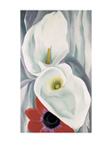 Calla Lilies with Red Anemone, 1928 Prints by Georgia O'Keeffe