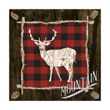 Plaid Birch Trail II Art by Gina Ritter