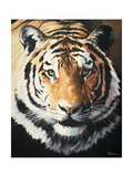 Tiger Posters by Vivien Rhyan