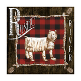 Rustic Birch Trail IV Posters by Gina Ritter