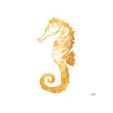 Gold Square Seahorse II Affiches par Julie DeRice