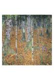 Birch Forest, 1903 Posters by Gustav Klimt