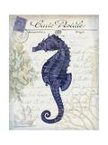 Seaside Postcard Cream b Premium Giclee Print by Fab Funky