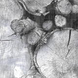 Logging Light III 写真プリント : ジョン・バトラー