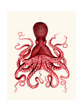 Red Octopus 3 Premium Giclee Print by Fab Funky