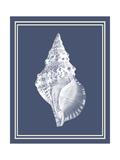Mixed Nautical White on Indigo Blue c Kunstdrucke von Fab Funky