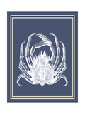 Mixed Nautical White on Indigo Blue f Premium Giclee Print by Fab Funky