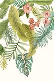 Soft Tropics II Posters par Naomi McCavitt
