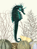 SeaHorse and Sea Urchins Poster von Fab Funky