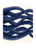 Giant Octopus Blue Triptych b Premium Giclee Print by Fab Funky