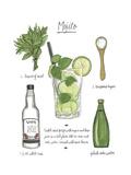 Classic Cocktail - Mojito Reproduction giclée Premium par Naomi McCavitt