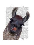 Silly Llama Premium Giclee Print by Fab Funky