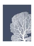 Corals White on Indigo Blue b Premium Giclee Print by Fab Funky
