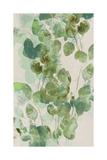 Watercolor Eucalyptus I ポスター : ジェニファー・ゴルトベルガー