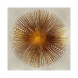 Bronze Sunburst I Giclée-tryk af Abby Young