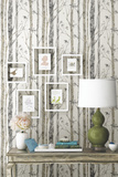 Birch Trees Peel and Stick Wall Decor Removable Wallpaper