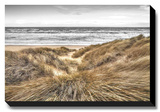Beach Dunes Stretched Canvas Print by Assaf Frank
