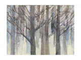 Forest Light Prints by Albena Hristova