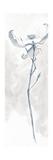 Solitary Dogwood IV Gray Schilderijen van Chris Paschke