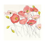 Black Line Poppies I Watercolor Print by Shirley Novak