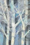 Winter Birches I Art by Albena Hristova