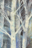 Winter Birches II Posters by Albena Hristova