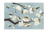 Bees and Blossoms Impressão giclée por Megan Moore