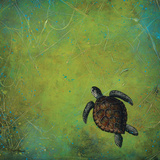 Slow and Steady Art by Britt Hallowell