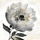 Tranquil Floral I Posters par Tania Bello