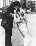 Sylvester Stallone Foto