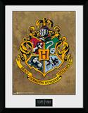 Harry Potter Hogwarts Reproduction encadrée pour collectionneurs