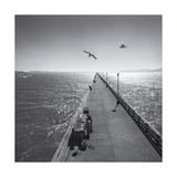 Berkeley Pier Birds Photographic Print by Henri Silberman