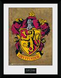 Harry Potter Gryffindor Keräilypainate