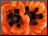 Oriental Poppies Lámina montada en tabla por Georgia O'Keeffe
