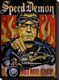 Speed Demon Stretched Canvas Print by Mike Bell