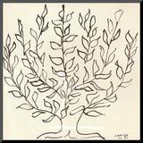 Le Platane Pohjustettu vedos tekijänä Henri Matisse