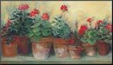 Kathleen's Geraniums Mounted Print by Carol Rowan