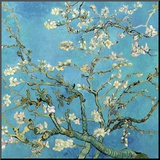 Almond Branches in Bloom, San Remy, c.1890 Mounted Print by Vincent van Gogh